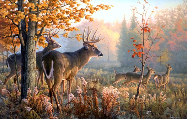 Картинка животные, картина, олени, Greg Alexander, Throw Caution to the Wind