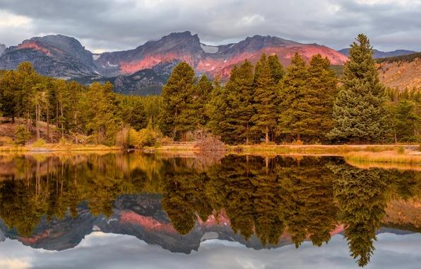 Картинка осень, лес, небо, деревья, горы, озеро, отражение, берег, Колорадо, серое, США, национальный парк