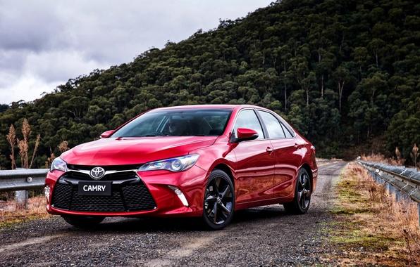 Картинка Toyota, тойота, камри, Camry, 2015, Atara