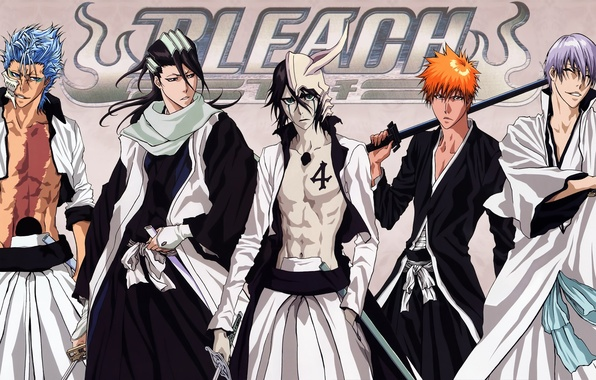 Картинка sword, game, Bleach, anime, katana, Ichigo, asian, Kurosaki Ichigo, manga, japanese, Shinigami, oriental, asiatic, shihakushou, …