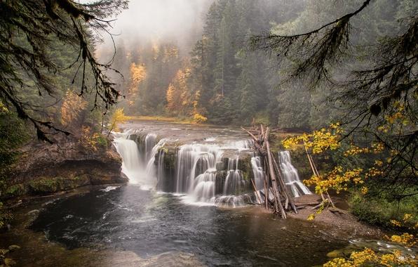 Картинка лес, пейзаж, природа, река, водопад