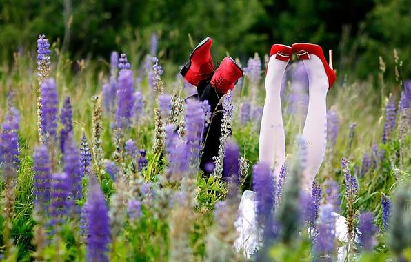 Картинка поле, лето, трава, радость, счастье, ноги, обувь, невеста, жених, новобрачные