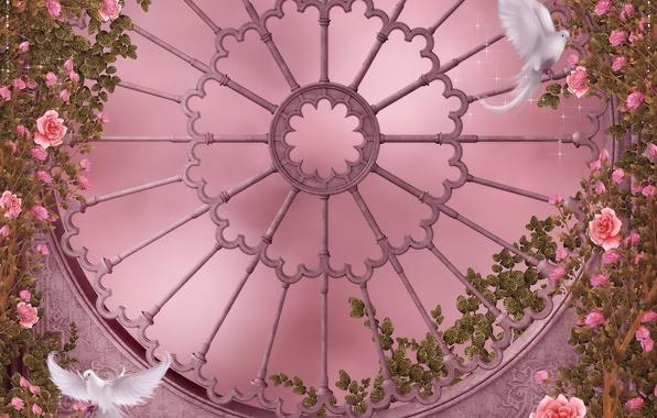 Картинка цветы, готика, розы, окно, голуби, гирлянды, flowers, dove, roses, pigeon, розовый сад, Rose Garden, garlands, …