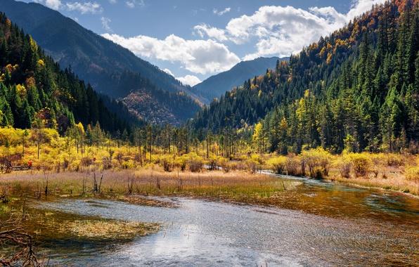 Картинка Природа, Горы, Озеро, Лес, Китай, Парк, Пейзаж, Jiuzhai Valley National Park