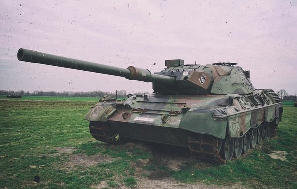 Картинка поле, танк, ствол, Leopard 1 A6