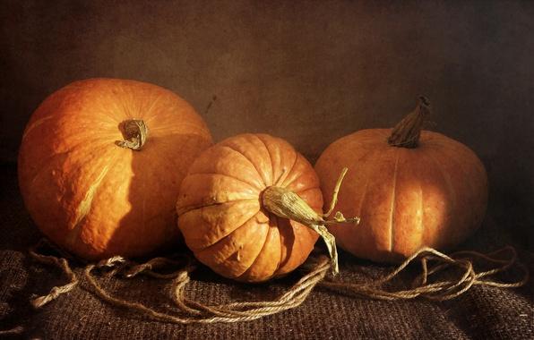 Картинка оранжевый, тыква, овощи