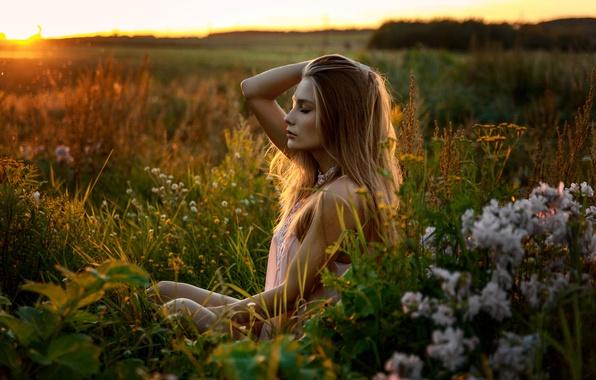 Картинка поле, лето, трава, девушка, закат, наслаждение, милая, модель, Виктория, relax, light, красивая, прелесть, сидит, dress, …