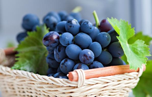 Картинка листья, ягоды, корзина, виноград, корзинка, грозди