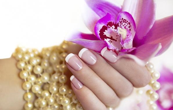 Картинка цветок, рука, жемчуг, пальцы, маникюр