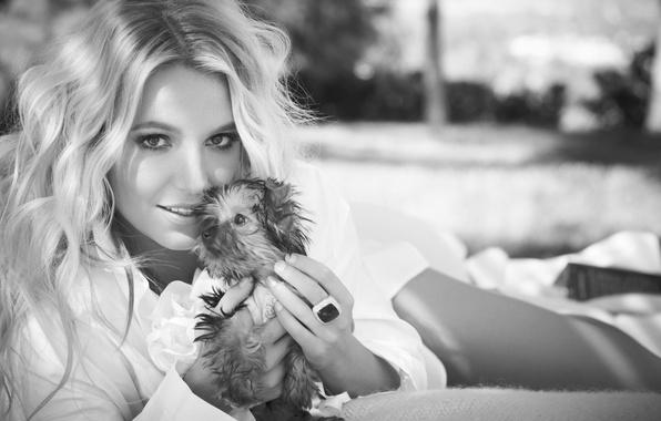 Картинка поза, блондинка, щенок, певица, Britney Spears, Бритни Спирс