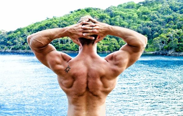 Картинка men, pose, back, bodybuilder