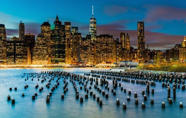 Картинка птицы, город, огни, река, здания, чайки, Нью-Йорк, небоскребы, опоры, США, Нижний Манхэттен, Ист-Ривер