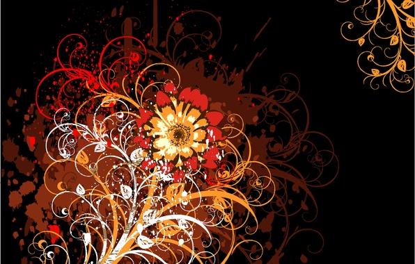 Картинка цветок, абстракция, узоры, черный фон