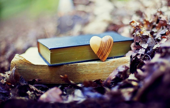 Картинка осень, лес, листья, любовь, природа, парк, сердце, книги, love, forest, nature, heart, park, autumn, old, …