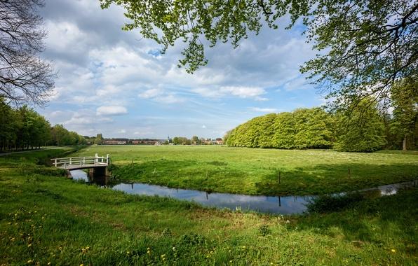 Картинка дорога, трава, облака, деревья, ветки, дома, канал, Нидерланды, мостик, лужайка, Elswout