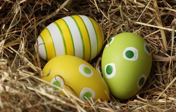 Картинка узор, яйца, пасха, гнездо, easter