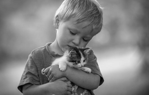 Картинка любовь, настроение, мальчик, чёрно-белая, дружба, котёнок, друзья, монохром