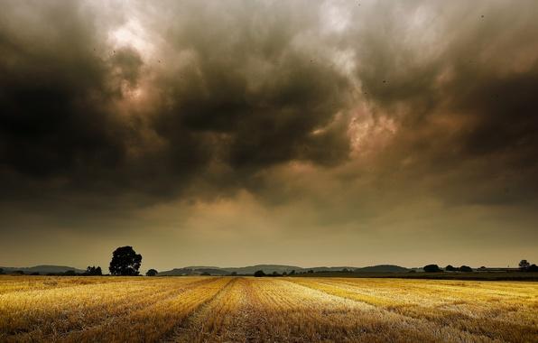 Картинка поле, деревья, горы, буря, горизонт, storm, trees, field, mountain, horizon, farm, фермы