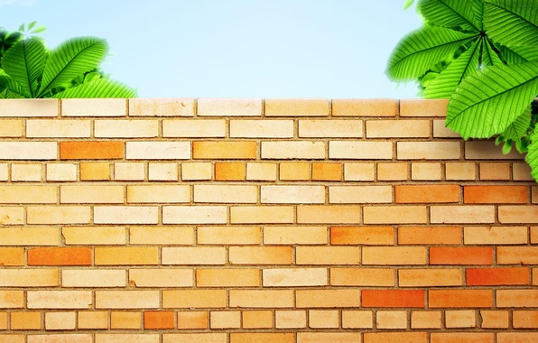 Картинка зелень, стена, wall, кирпичи
