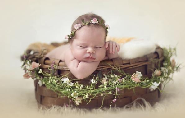 Картинка корзина, сон, девочка, венок, младенец