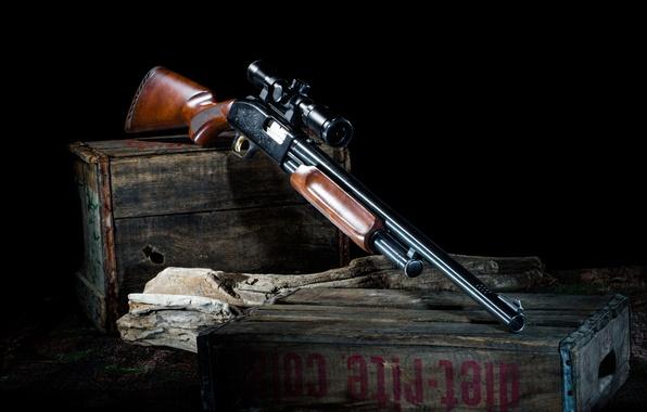 Картинка оружие, оптика, ящики, ружьё, бревно, помповое, Mossberg 500