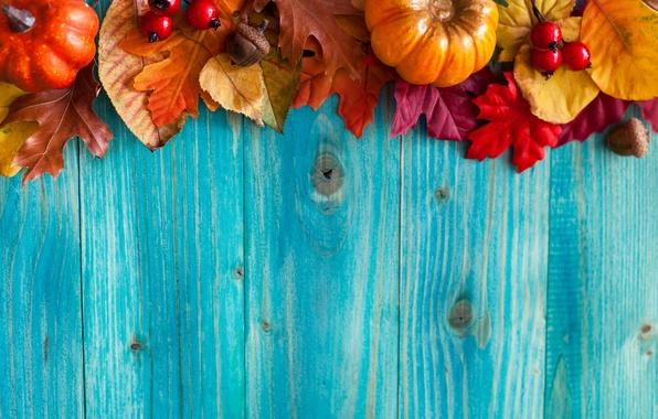 Картинка осень, листья, ягоды, дерево, урожай, тыквы, желуди