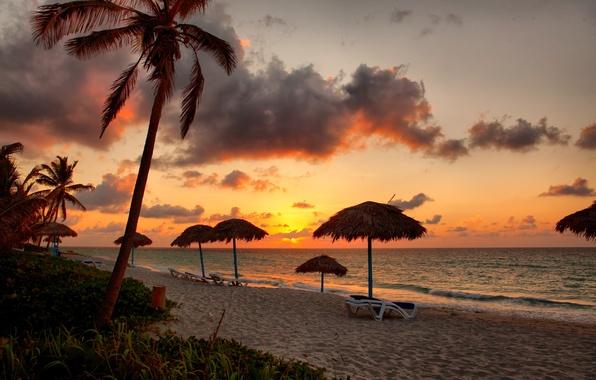 Картинка песок, море, пляж, закат, пальмы, берег, beach, sea, sunset, sand, shore, paradise, tropical
