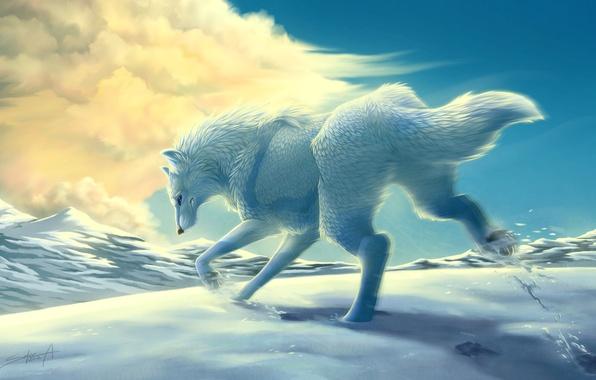 Картинка зима, белый, облака, снег, горы, движение, волк, арт, бег, transparentghost