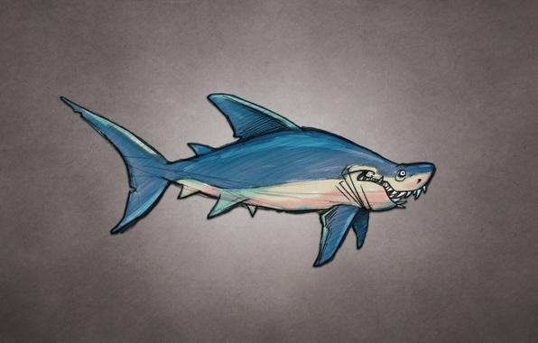 Картинка рыба, акула, shark, fish, темноватый фон