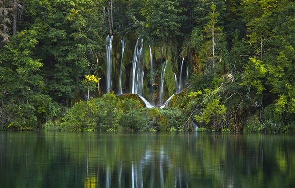 Картинка лес, вода, деревья, озеро, водопад, Хорватия, Croatia, Plitvice Lakes National Park, Национальный парк Плитвицкие озёра