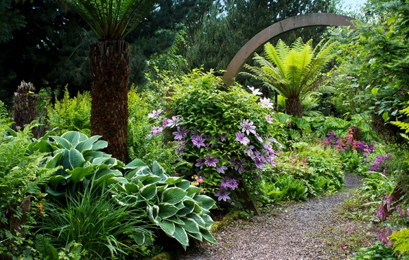 Картинка зелень, деревья, цветы, парк, сад, Великобритания, тропинка, кусты, Mount Pleasant gardens
