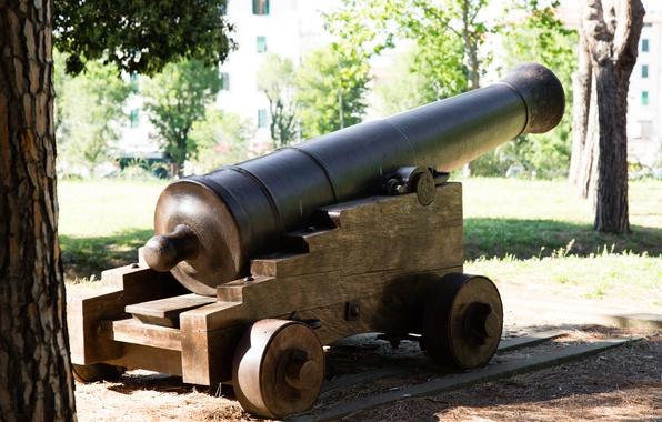 Картинка оружие, пушка, старинное