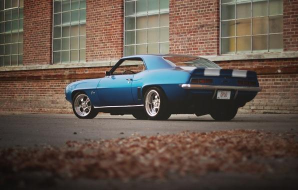 Фото обои задние, здание, окна, Camaro, колеса, Chevrolet, листья