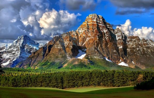 Картинка лес, небо, трава, облака, деревья, пейзаж, горы, тучи, природа