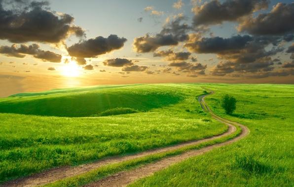 Картинка дорога, лето, небо, солнце, облака, пейзаж, природа, холмы, утро, красиво