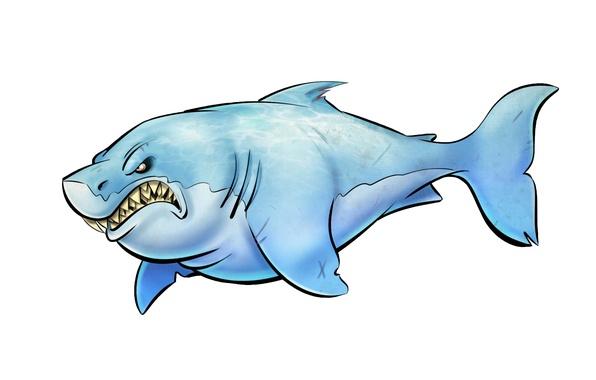 Картинка рыба, акула, светлый фон, shark, зубастая