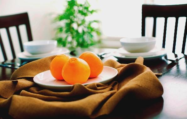 Картинка оранжевый, стол, стулья, еда, апельсины, тарелка, кухня, кружка, чашка, посуда, ткань, фрукты, коричневый, brown, блюдце, …