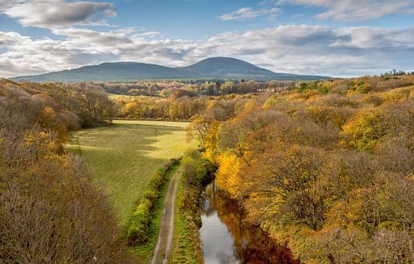 Картинка дорога, поле, осень, лес, небо, облака, деревья, горы, природа, речка