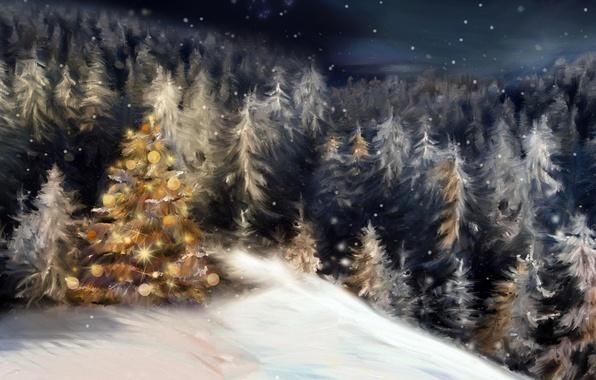 Картинка зима, лес, снег, ночь, праздник, елки, елка, новый год, рождество