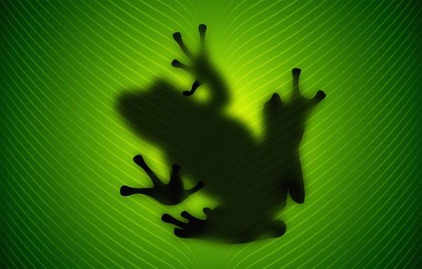 Картинка лист, зеленый, Лягушка