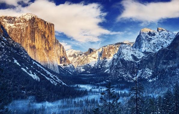 Картинка зима, лес, небо, облака, снег, деревья, горы, туман, Yosemite, National Park, Sierra Nevada