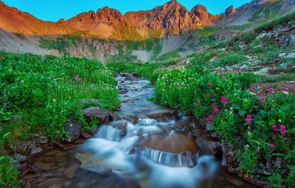 Картинка лето, цветы, горы, природа, озеро, камни, поток, утро, США, San Juan Mountains, Silverton Colorado