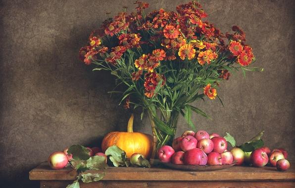 Обои цветы октябринки октябрь натюрморт фрукты сливы