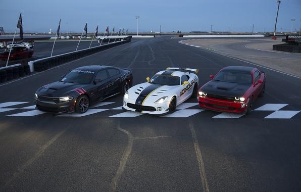 Картинка Dodge, Challenger, Viper, додж, вайпер, Charger, чарджер, GTC, челленджер, SRT