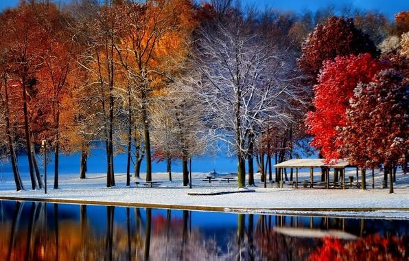 Пейзаж зима осень деревья парк пруд