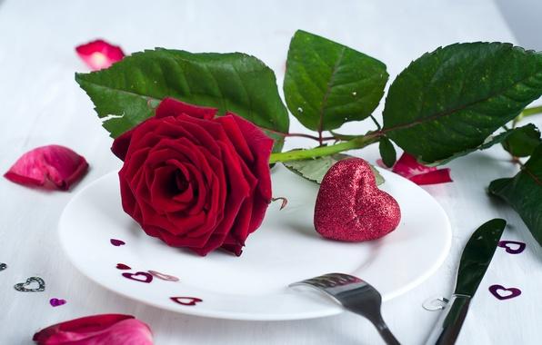 Картинка цветок, сердце, роза, лепестки, тарелка, сердечки, День Святого Валентина