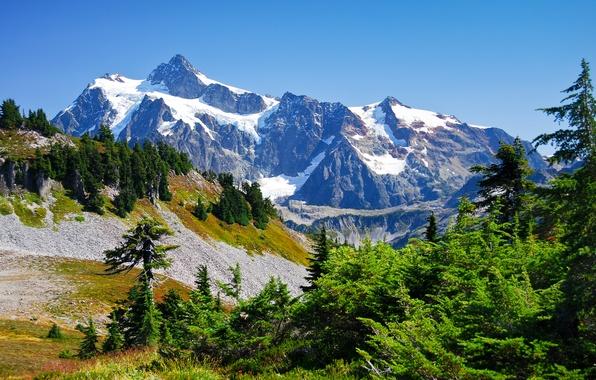 Картинка небо, снег, деревья, горы, вершины, ущелье