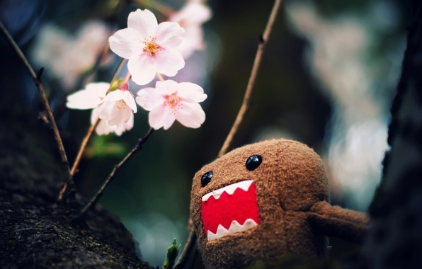 Картинка макро, цветы, ветки, фото, дерево, обои, игрушка, картинки, wallpapers, персонаж, Домо-кун, Domo-kun