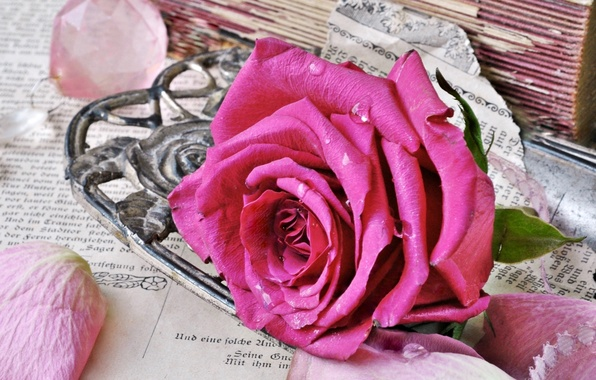 Картинка стиль, розовая, роза, книги, старые, лепестки, бутон, страницы, винтаж