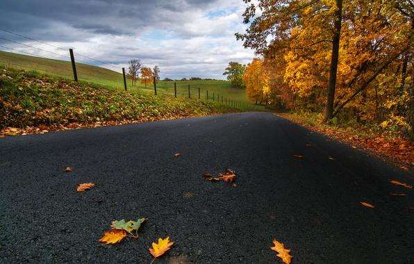 Картинка дорога, осень, асфальт, листья, облака, деревья, природа, поля, желтые, США, Пенсильвания